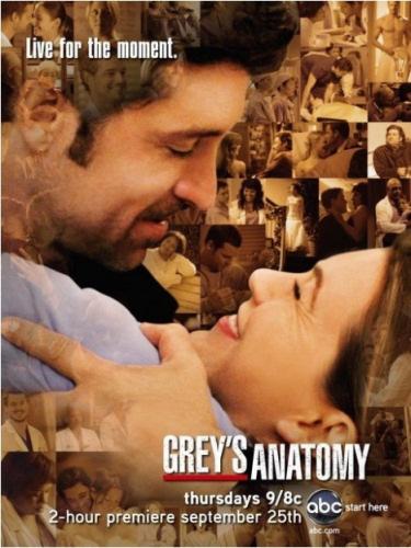 Otras series Poster-greys-anatomy-5